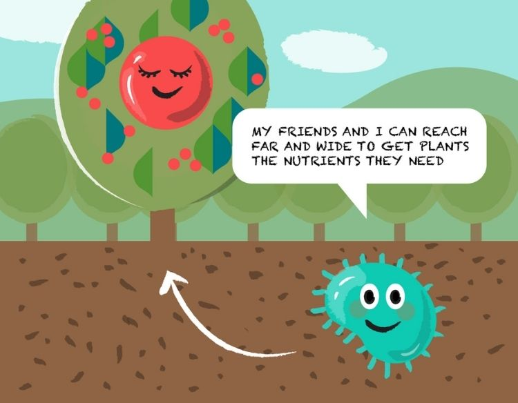 Free the Microbes